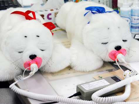 My favorite robot, Paro, was designed to be a therapeutic tool used in hospitals in nursing homes.  This is a picture of some Paros recharging with their pacifiers.