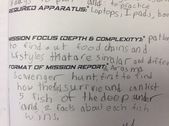 Click here for a blank Mission Report.