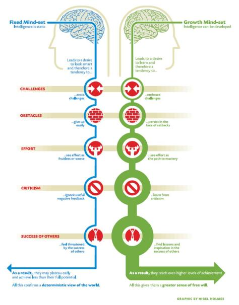 from:  http://livepaola.wordpress.com/2009/08/29/mindsets-and-carol-dweck/