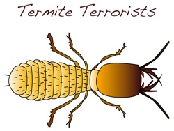 Check out the Math Pickle Termite Terrorists Challenges here!