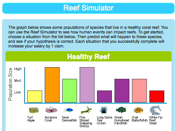 Reef Simulation | Engage Their Minds