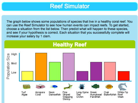 Click here to try the Reef Simulator tool.